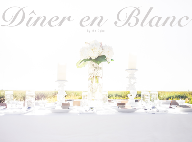 2014-Diner-en-Blanc-for-Shianne-and-Scotty-9130251-cover